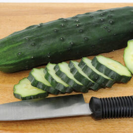 Seedling – Cucumber, Marketmore