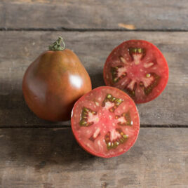 Seedling – Tomato, Japanese Black Trifele