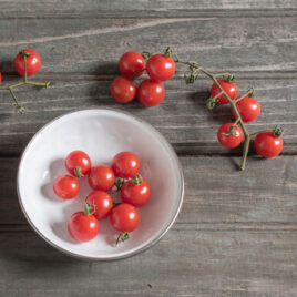 Seedling – Cherry Tomato, Matt's Wild