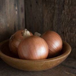Seedling, Onion, New York Early 4-PACK