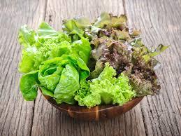 Seedling, Head Lettuce Mix – 4 PACK