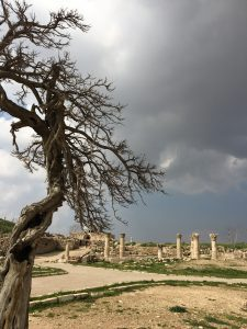 dead tree with roman ruins and dark clouds in the background