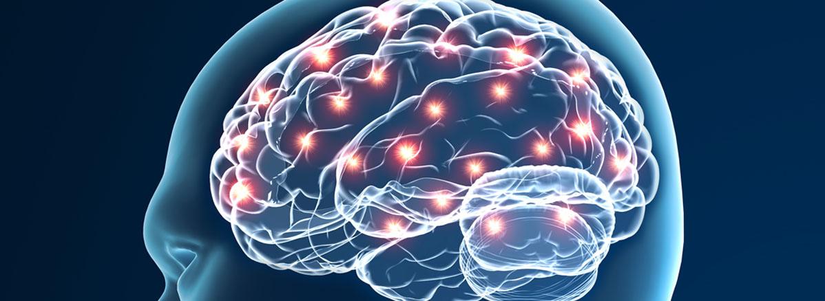 Neurology Graphic