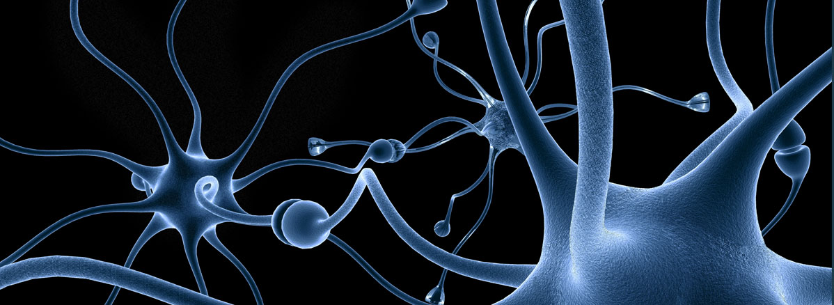 Neuron & Axon Slider