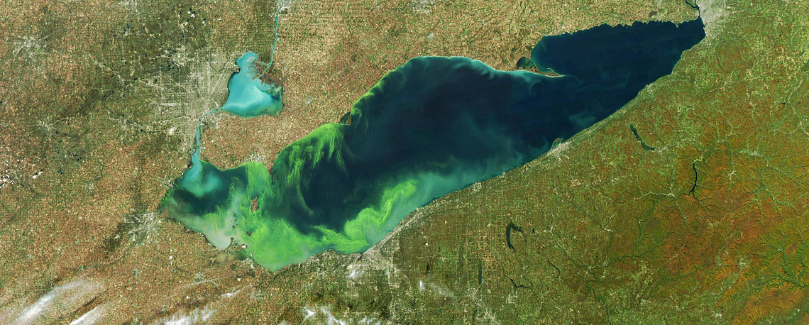 Satellite view of a well-known Harmful Algal Bloom in Lake Erie Photo: USGS