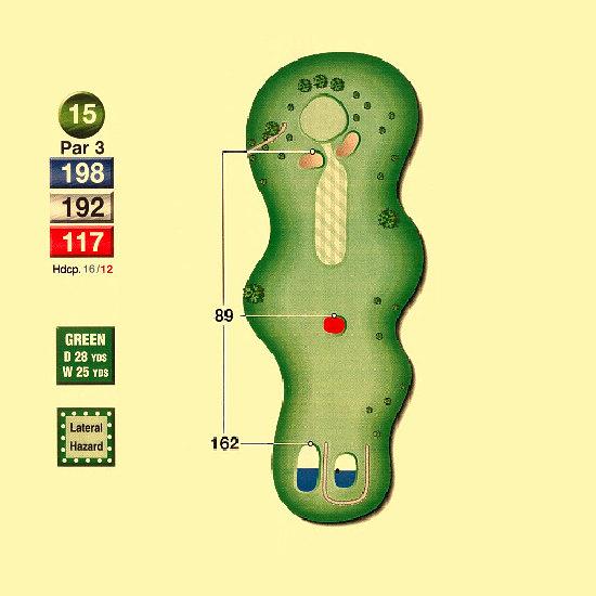 Hawk_Meadows_Golf_Course_15th_Hole-par3
