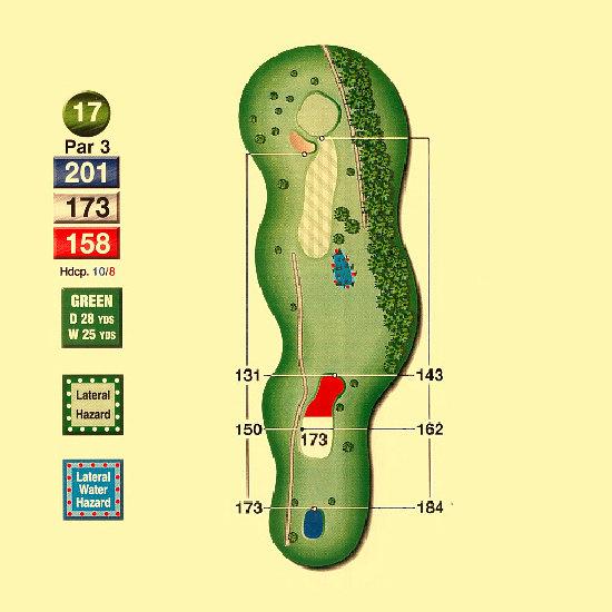 Hawk_Meadows_Golf_Course_17th_Hole-par3