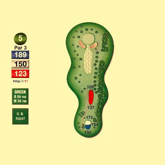 Hawk_Meadows_Golf_Course_5nd_Hole-par3