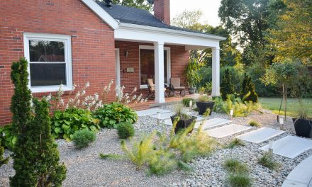 Practical ways to transform for curb appeal: A local case study