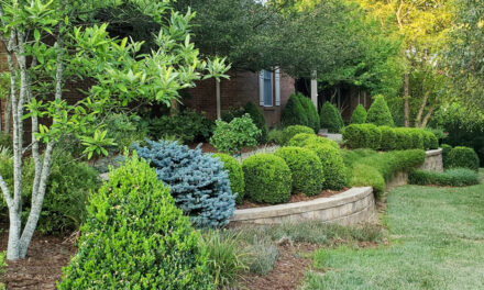 Outstanding landscape design leads The Garden Club of Frankfort to choose Barker home as Frankfort's House of the Month