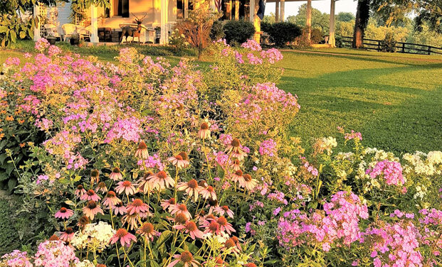 Gardening tradition: Luallen house chosen as The Garden Club of Frankfort's House of the Month