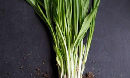 Ramps, or wild leeks, give food that homey, yet gourmet touch