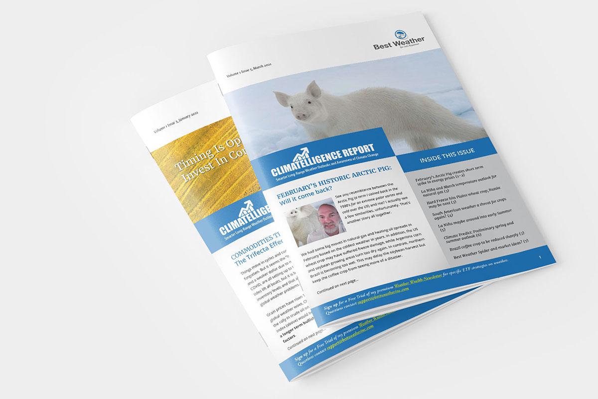 digital and print newsletter design