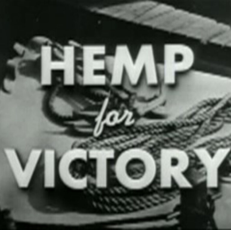 hemp for victory square