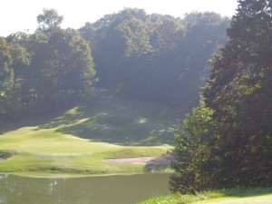 DSC03124 Sultans Run on the second hole DS