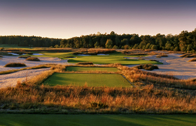 Forest Dunes 17 pic