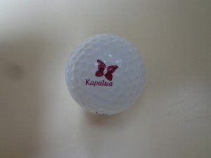 DSC06359 the logo ball DS