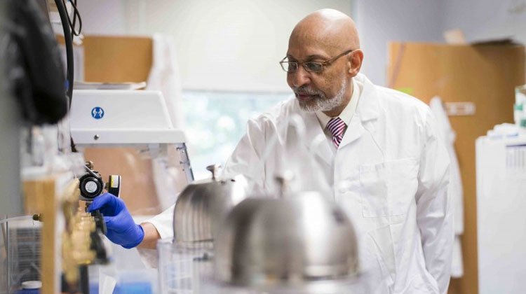 FAMU School of the Environment Professor Henry Neal Williams, Ph.D., is one of the many researchers contributing to the success of the University's research program. Williams is globally recognized as one of the foremost experts on the ecology of bacterial predators.