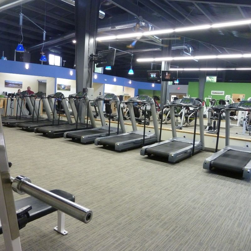 treadmills lined up with tons of floor space behind and a bright spacious gym atmosphere