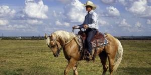 cowboy-746992_1280small