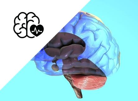 Cerebellar Stroke: Symptoms and Treatment