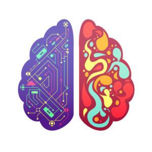 right brain versus left brain
