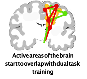 dual task training and brain activity