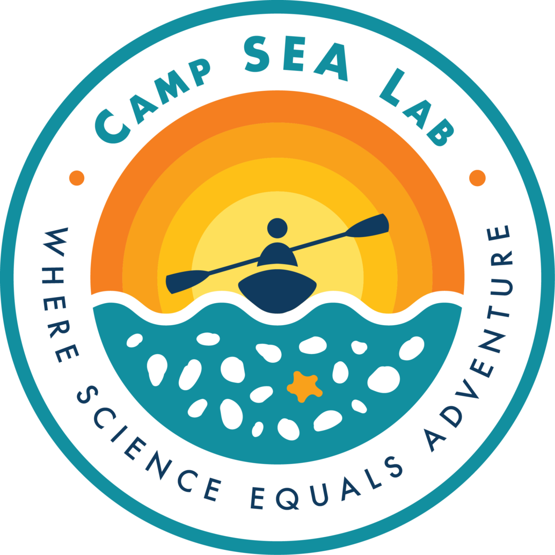 Logo-Color_Camp-SEA-Lab