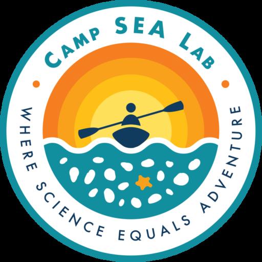 https://secureservercdn.net/192.169.221.188/d7h.596.myftpupload.com/wp-content/uploads/2020/05/cropped-Logo-Color_Camp-SEA-Lab.png