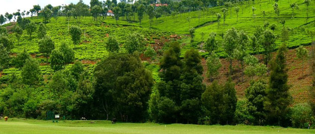 ooty, queen of seven hills, nilgiris