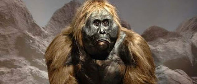 Facts about Bigfoot Creatures