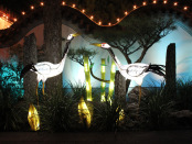 Birds in the Chinese Garden of Light. Photo by Annie Shreeve
