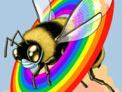 This is not a fringe bee