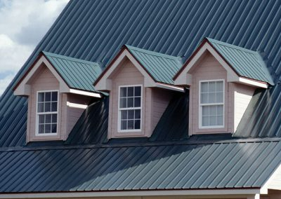 Professional Metal Roof Cleaning Services in Georgetown, DE