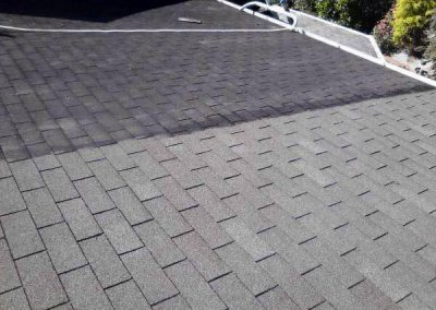 Expert Roof Cleaning services in Georgetown, DE