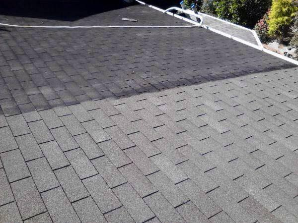 Roof Cleaning in (Kent and Worcester Counties, DE)