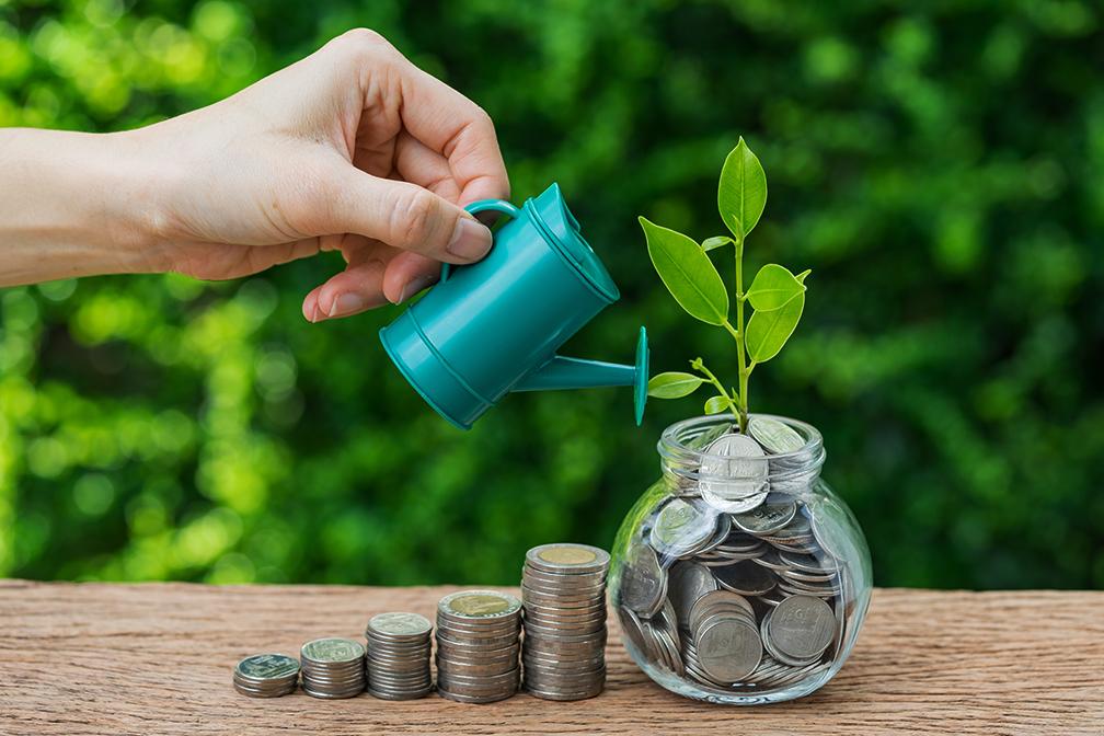 watering your money tree
