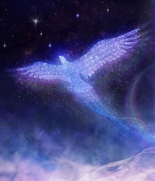 Phoenix flying free