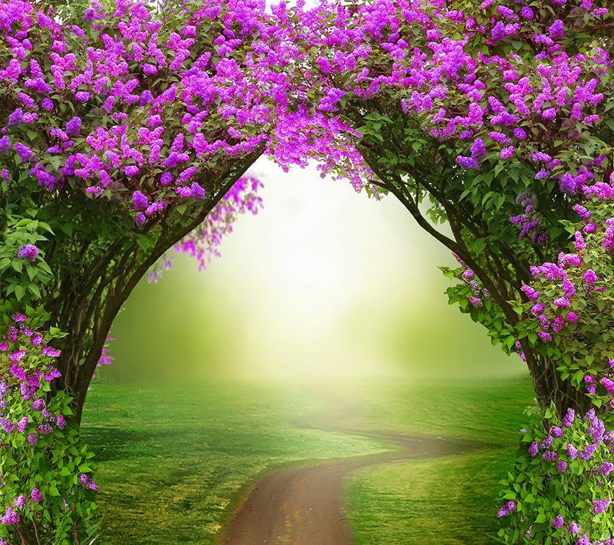 Spring archway