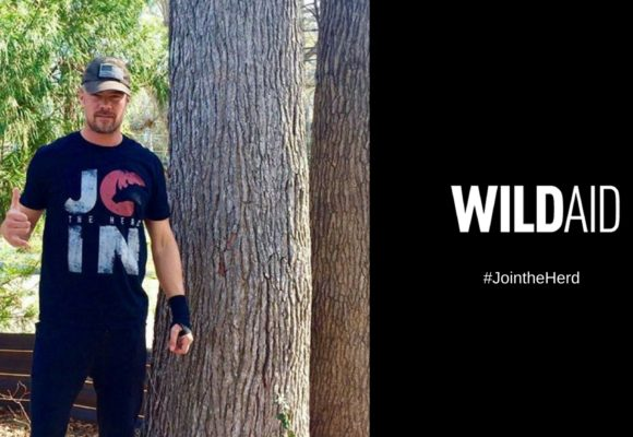 Josh Duhamel Lends Social Media Support in WildAid's Efforts to End Poaching