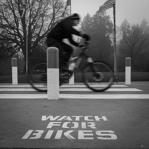 cyclist riding bike thru a crosswalk with the words 'watch for bikes' on the ground. the weather looks cold as the cyclist has warm clothing and a toque.