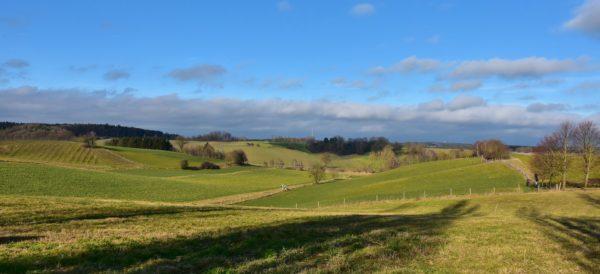 Investing in Rural Real Estate