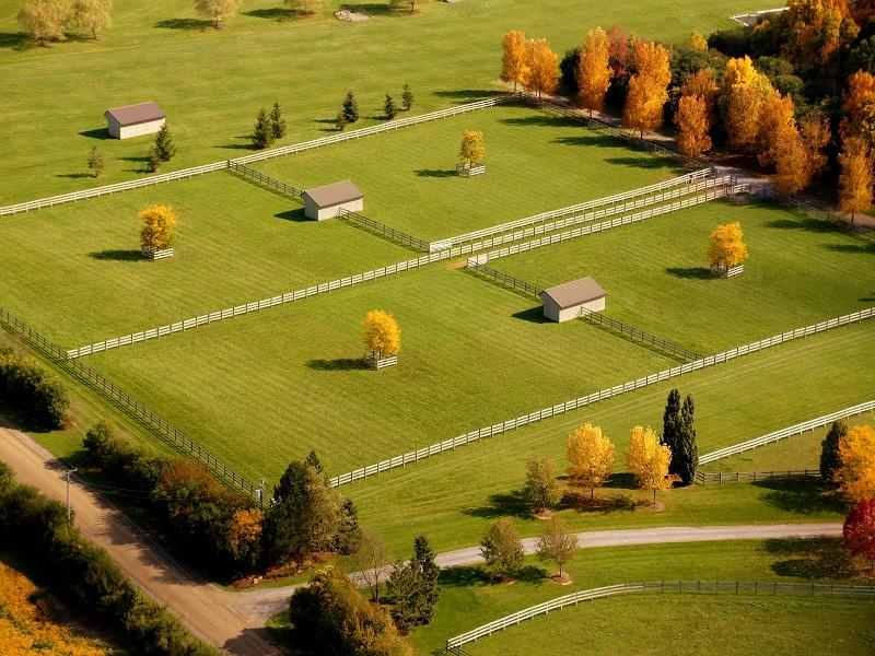 Ideal Horse Farm Layout For Every Acreage