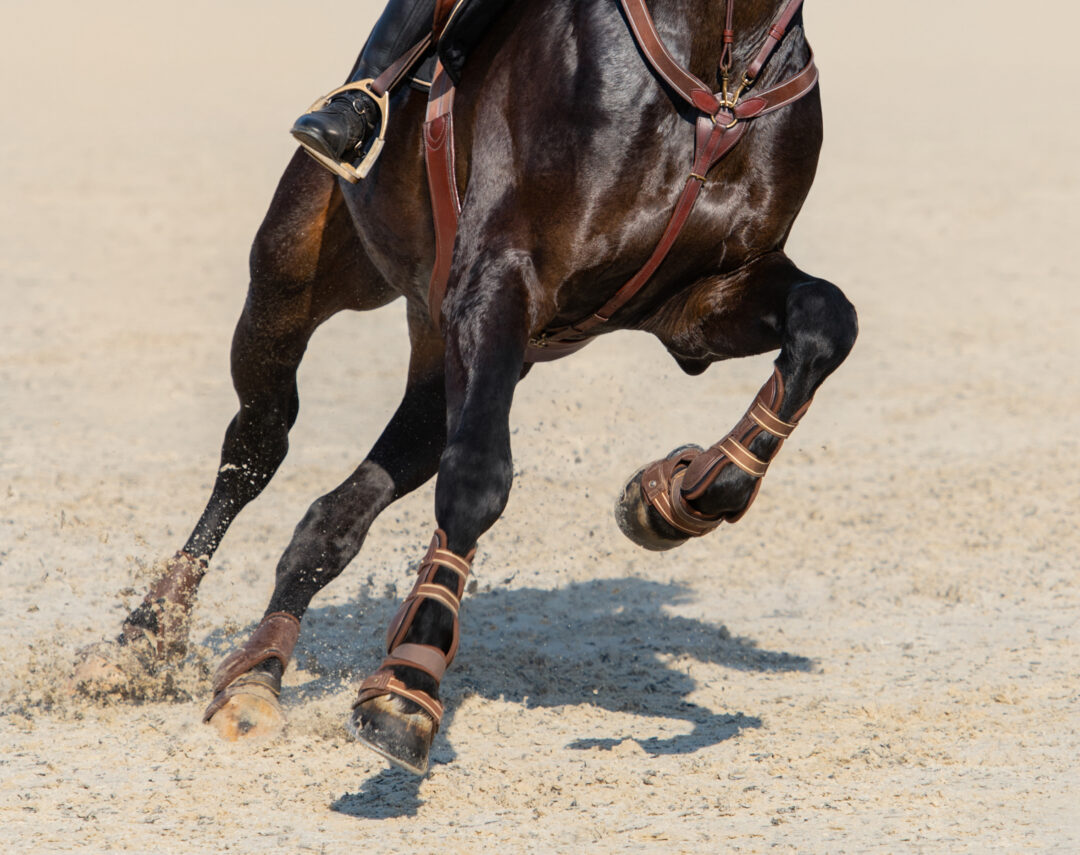 Horse Footing Cost