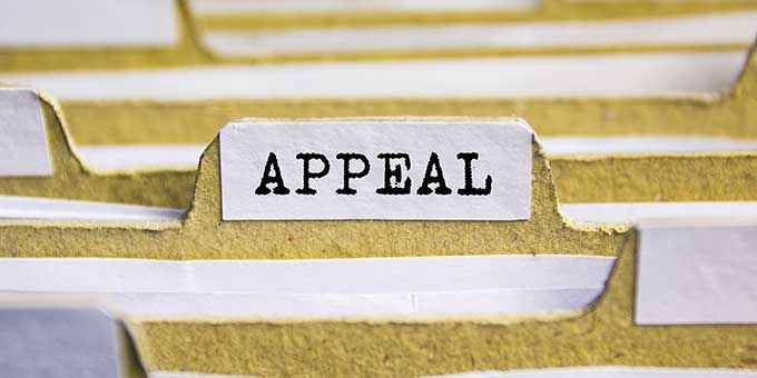 Appeal Attorney in Tampa Florida