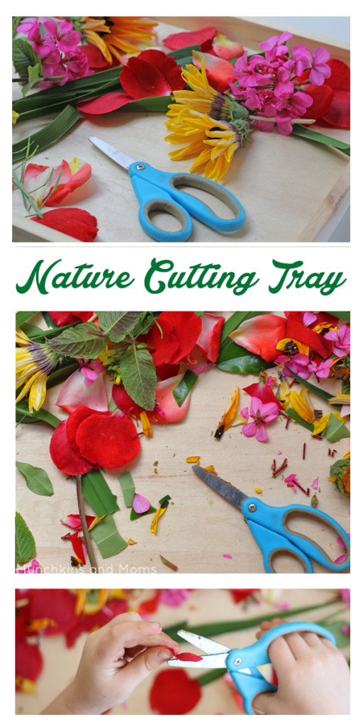 Give preschoolers practical exercises with scissor practice. This nature cutting tray is perfect for toddlers and preschoolers.