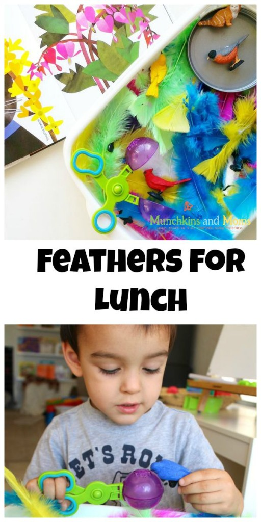 Feathers for lunch- a great activity based on the book!