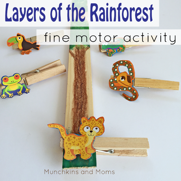 layers of the rainforest fine motor activity