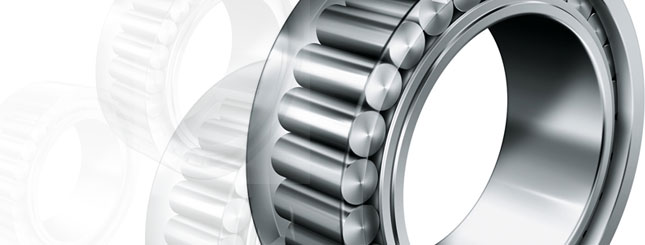 INA Needle Bearings
