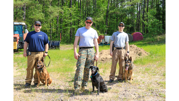 Hoover K9s help officers detect dangerous situations